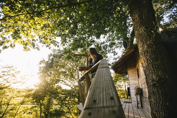 Les Cabanes au Bois d'Orient ©clara-ferrand