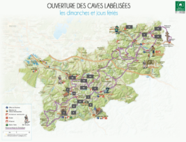 cartes-caves-vierge