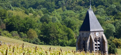 Aube, Het land van de Champagne