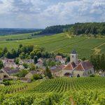 Activités et événements autour du Champagne