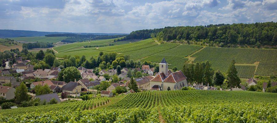 Cote-des-Bar-Viviers-sur-Artaut