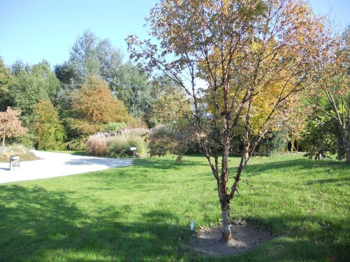 jardin botanique de Marnay