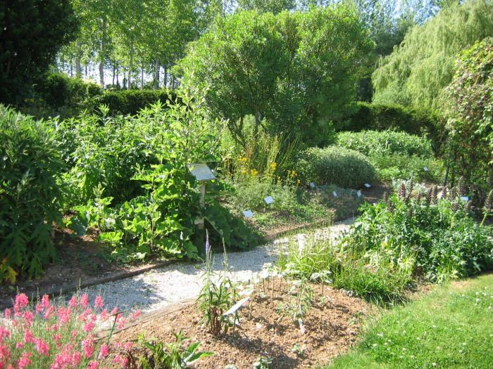 Jardin botanique de Marnay sur Seine - crédit photo CDT Aube en Champagne (7)
