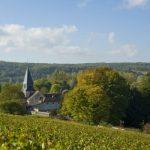Visiter la Côte des Bar et sa Route du Champagne