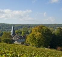 Visita la Côte des Bar – Route du Champagne