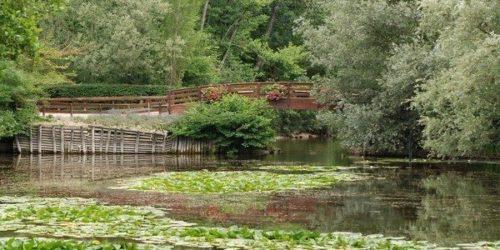 Parc-de-Fouchy