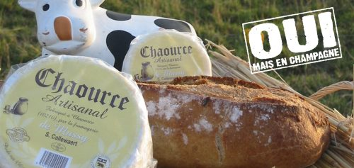 chaource1