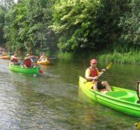 Canoë sur la Seine à travers les villages du vignoble