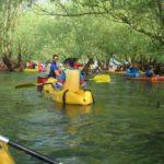 Canoë et Kayak à Troyes : Une activité ludique en famille, en couple ou entre amis