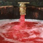 Le rosé des Riceys : un vin Champenois unique et royal