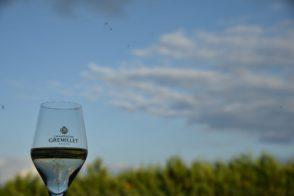 Visite & dégustation – Champagne Gremillet