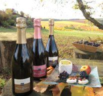 Découverte Gôut, Saveur, Arômes – Champagne Rémy Massin & Fils