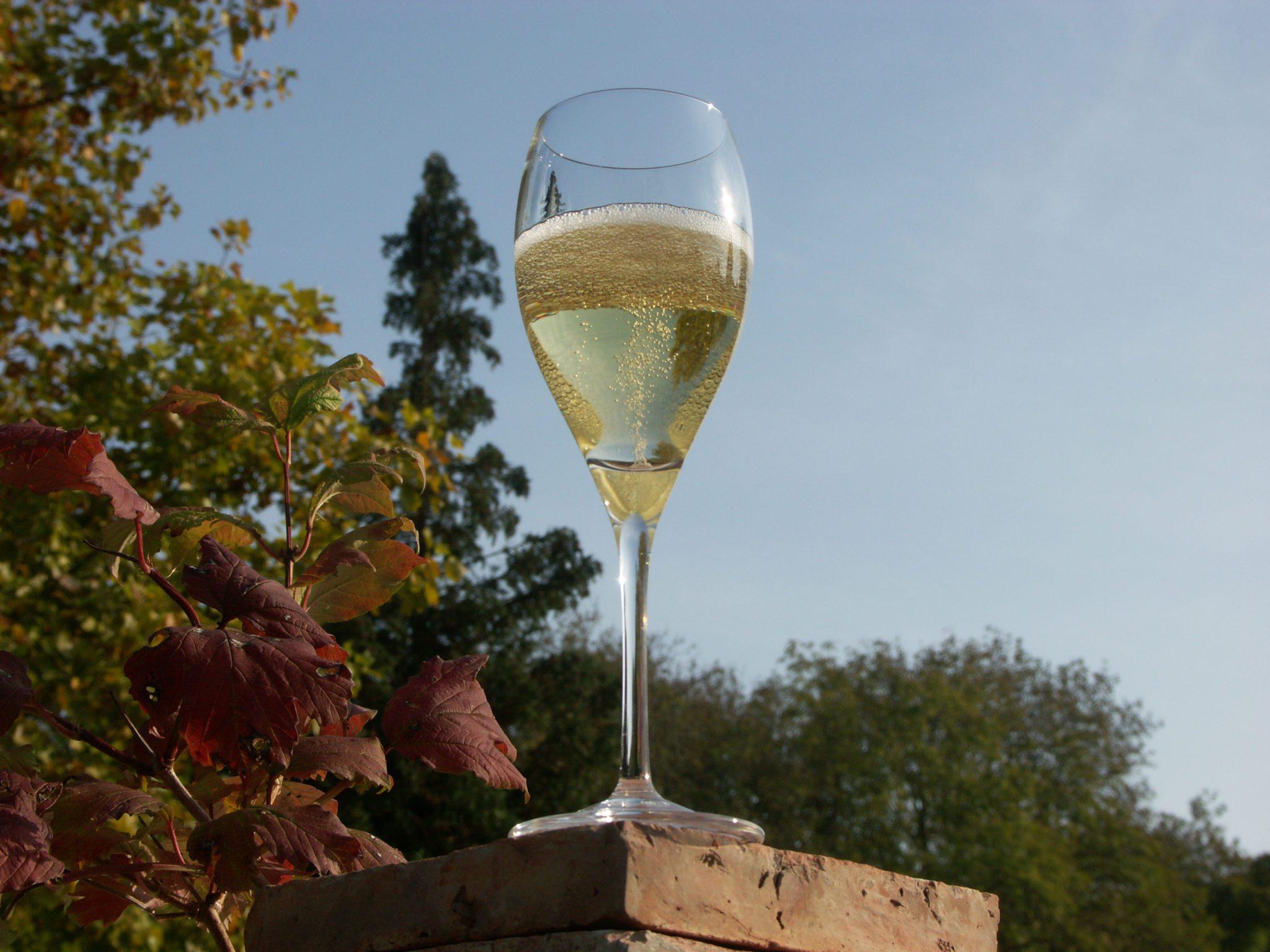 00-Champagne-5-crédit-photo