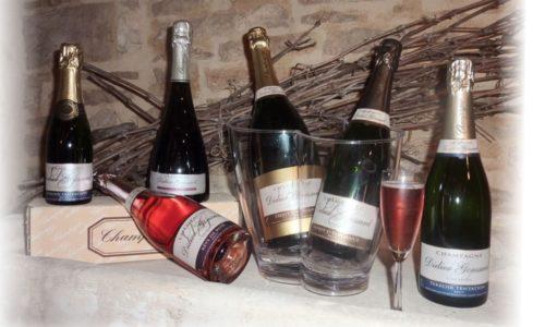 Champagne Didier Goussard (8)