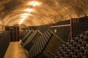 Visite de Caves en Champagne