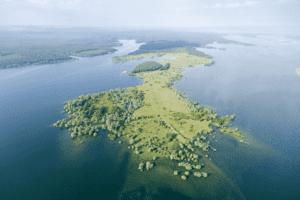 Pointe de Charlieu - Lac du Temple (RNN de la Forêt d'Orient) - Pascal Bourguignon