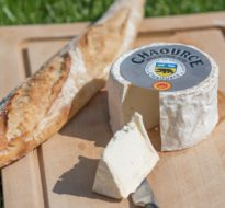 Chaource : Un delizioso formaggio