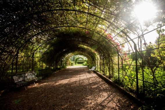 Pique-nique dans les parcs et jardins de l'Aube © A. M. Barruecos