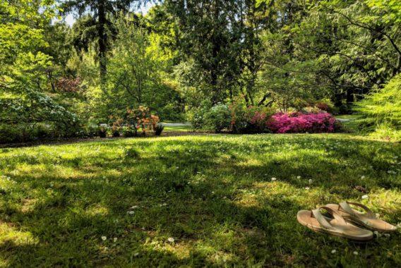 PIque-Nique à l'Arboretum de Brienne-le-Château
