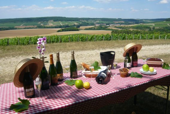 Pique-nique vigneron - Champagne Rémy Massin