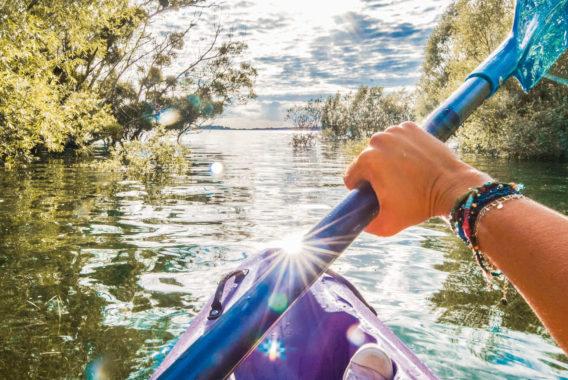 Kayak Forêt Immergée
