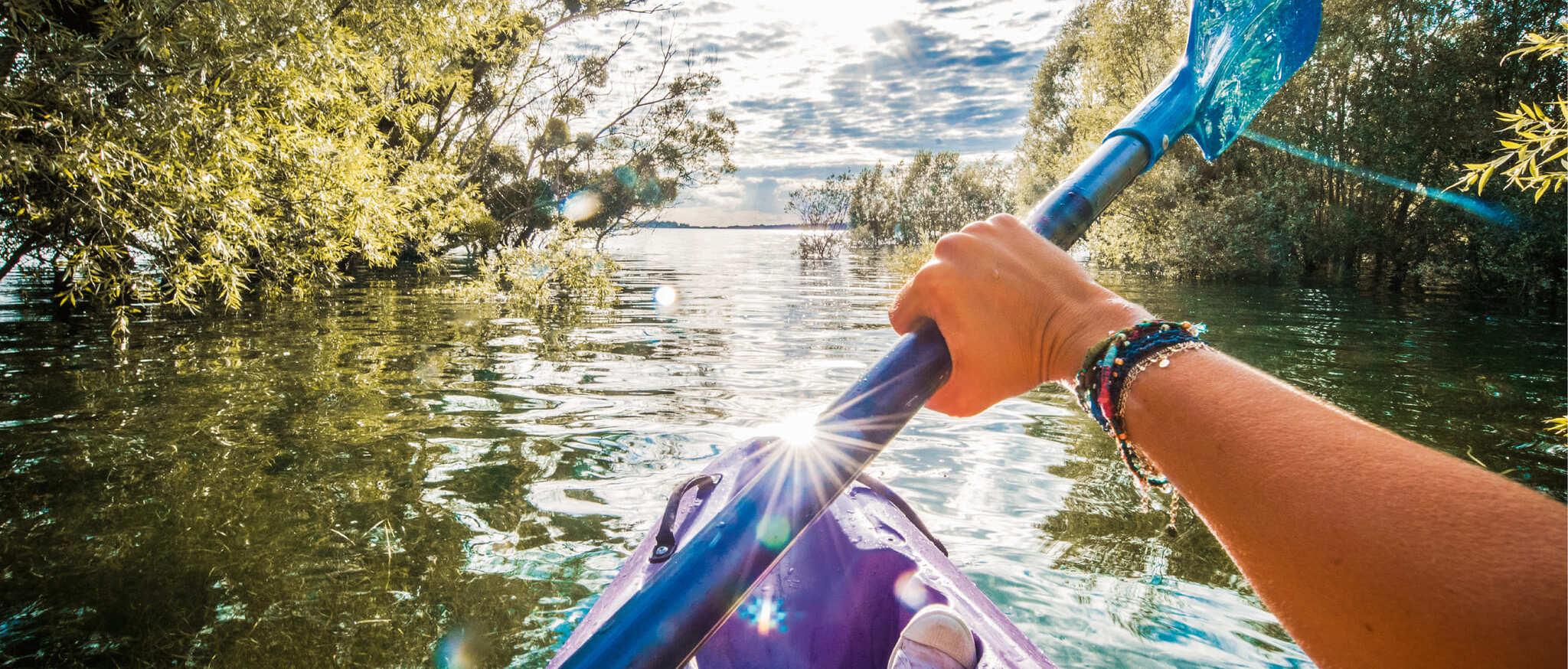 kayak forêt immergée - crédit Le Bonheur des gens (3)