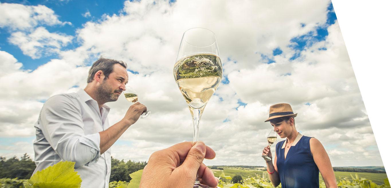 Découvrez les caves de la Route Touristique du Champagne