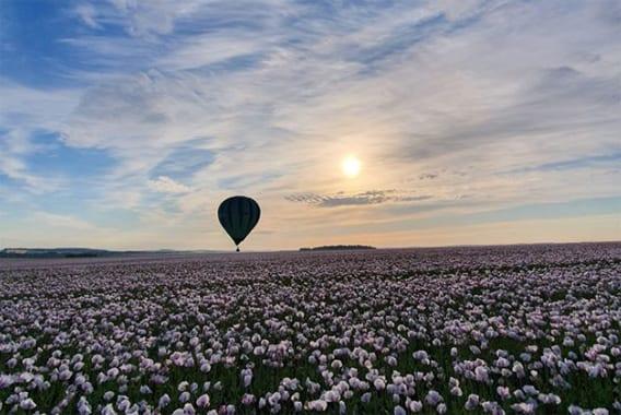 vibrez-dans-l'Aube-montgolfiere