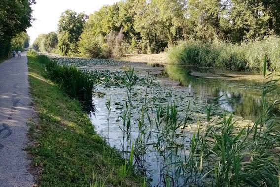 Voie-verte-canal-Haute-Seine---crédit-CDT-Aube-1