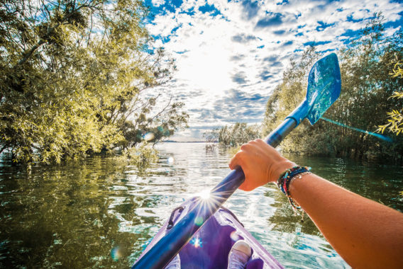 Kayak en forêt immergée - Plongez dans l'Aube