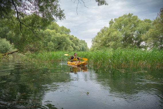 kayak foret immergée